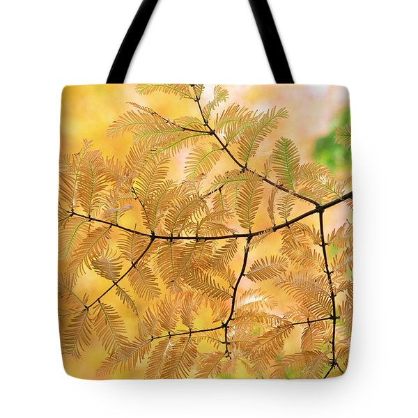 Subtle Shades Of Autumn Tote Bag