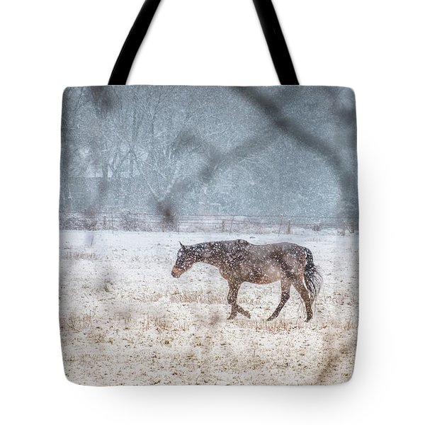 Suburb Of Hamburg.snow Tote Bag