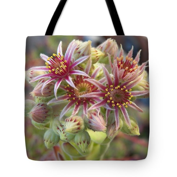 Succulent Cactus Tote Bag by Laurie Kidd
