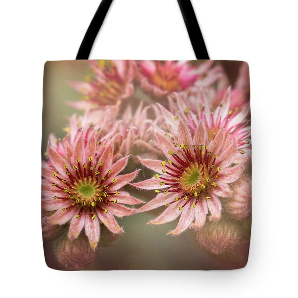 Succulent Flowers - 365-100 Tote Bag