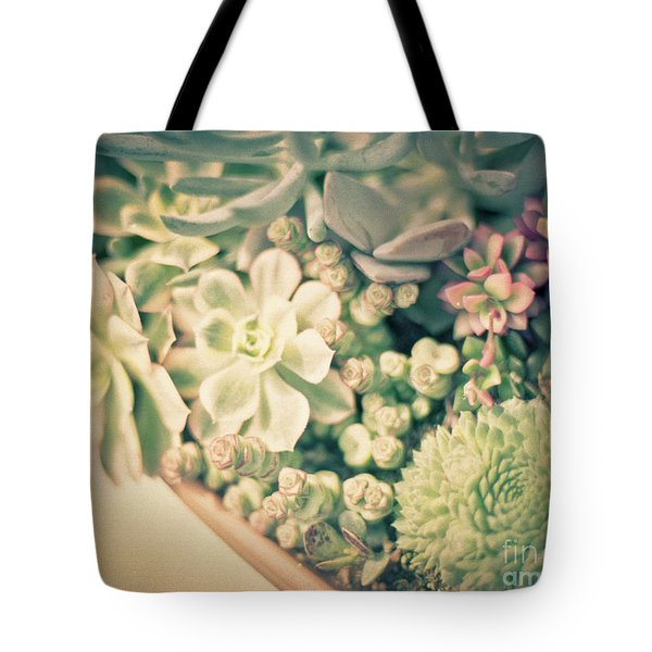 Tote Bag featuring the photograph Succulent Garden by Ana V Ramirez