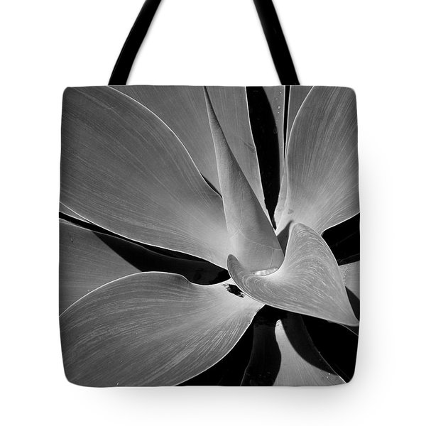 Succulent In Black And White Tote Bag by Karen Nicholson