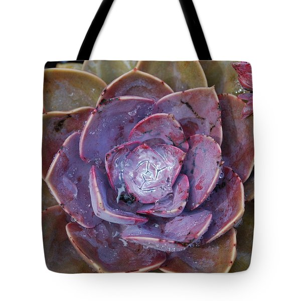 Succulent Star Tote Bag