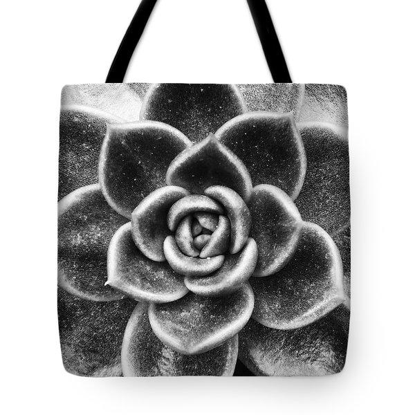Succulent Symmetry Tote Bag