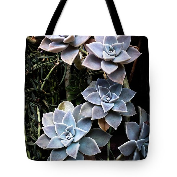 Tote Bag featuring the photograph Succulents Graptopetalum Paraguayense     by Catherine Lau