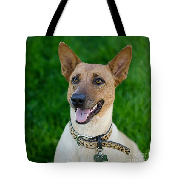 Tote Bag featuring the photograph Sugar 2 Square by Irina ArchAngelSkaya
