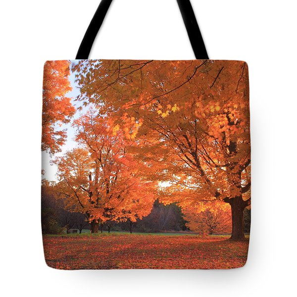 Sugar Maples In Morning Light Tote Bag