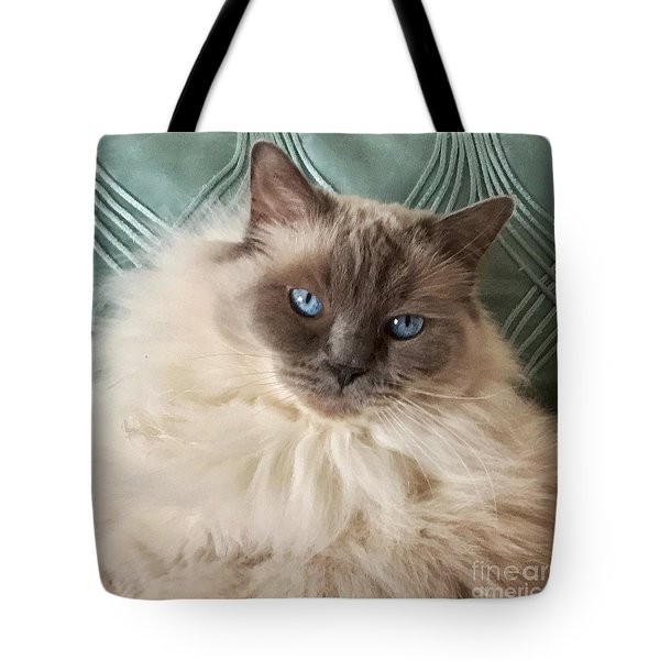 Sugar My Ragdoll Cat Tote Bag