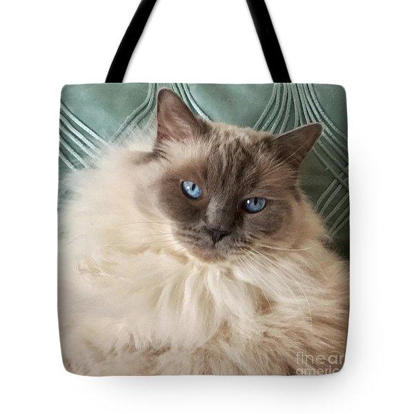 Sugar My Ragdoll Cat Tote Bag