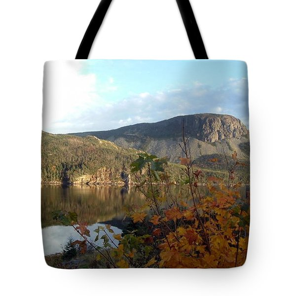 Sugarloaf Hill In Autumn Tote Bag by Barbara Griffin