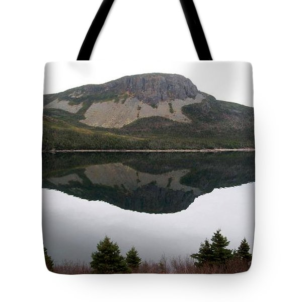 Sugarloaf Hill Reflections Tote Bag by Barbara Griffin