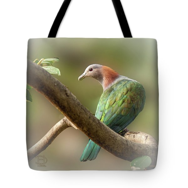 Sulawesi Green Imperial Pigeon Tote Bag