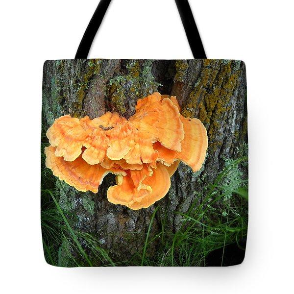 Sulfur Shelf Fungus On A Tree Tote Bag