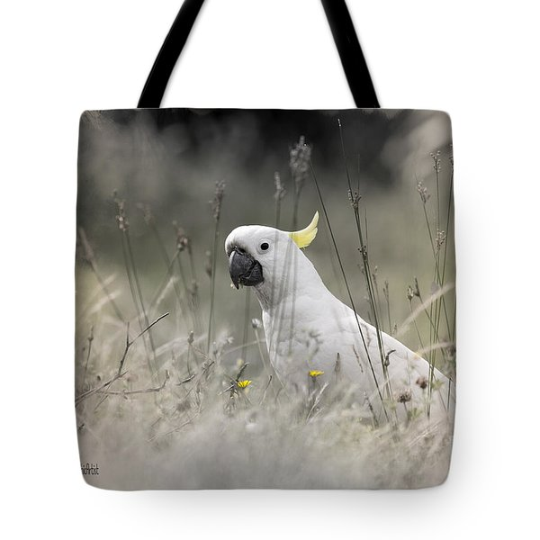 Tote Bag featuring the photograph Sulphur Crested Cockatoo by Chris Armytage