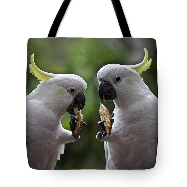 Sulphur Crested Cockatoo Pair Tote Bag by Avalon Fine Art Photography