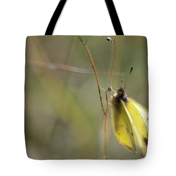Sulphur Dreams Tote Bag