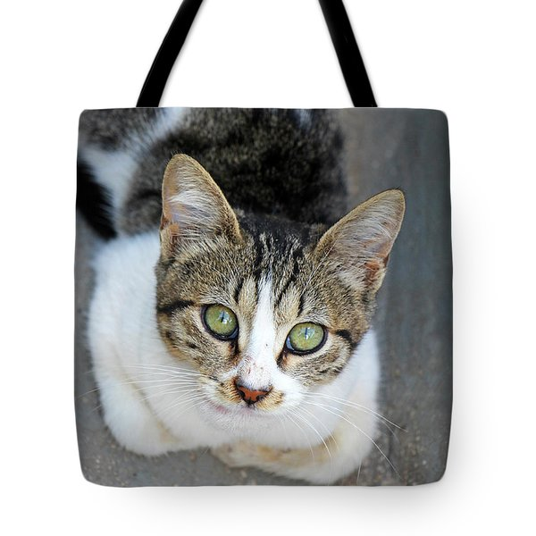 Tote Bag featuring the photograph Suma by Munir Alawi