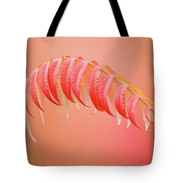 Sumac Branch Tote Bag