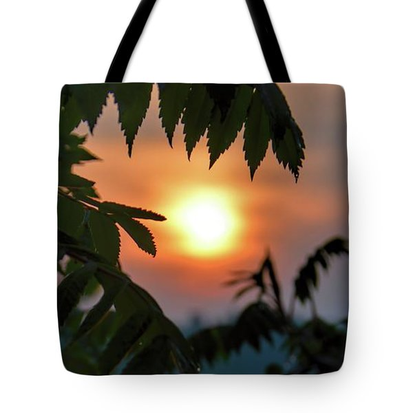 Sumac Sunrise At The Lake Tote Bag by Henry Kowalski