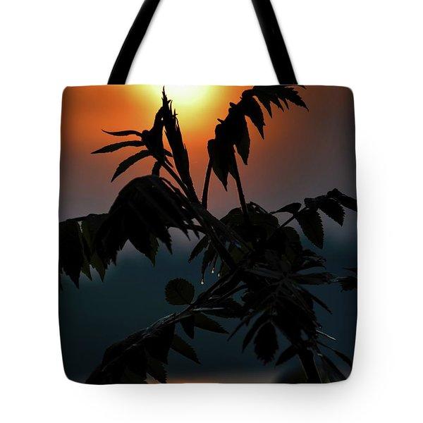 Sumac Sunrise Silhouette Tote Bag