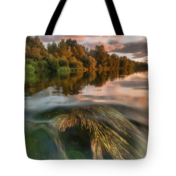 Summer Afternoon Tote Bag by Davorin Mance