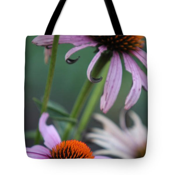 Summer Tote Bag by Amanda Barcon