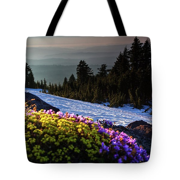 Tote Bag featuring the photograph Summer And Winter by David Chandler