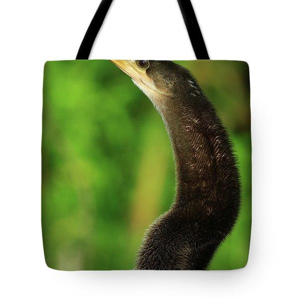 Summer Anhinga Tote Bag