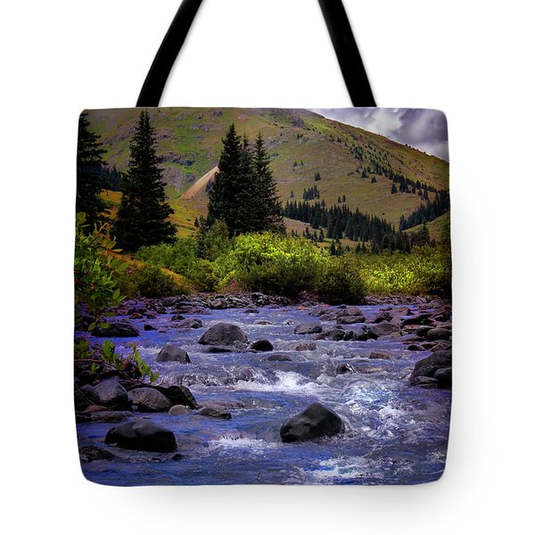 Tote Bag featuring the photograph Summer At The Animas River by Ellen Heaverlo