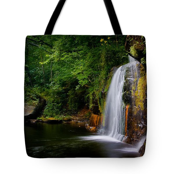 Tote Bag featuring the photograph Summer At Wolf Creek Falls by Rikk Flohr