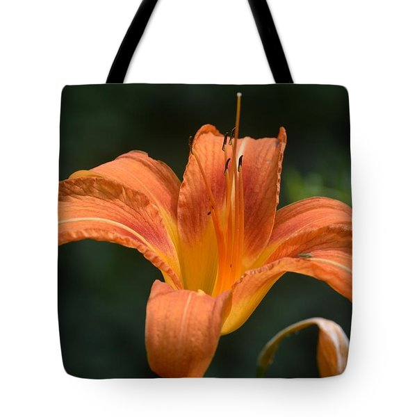Summer Bloom-3 Tote Bag