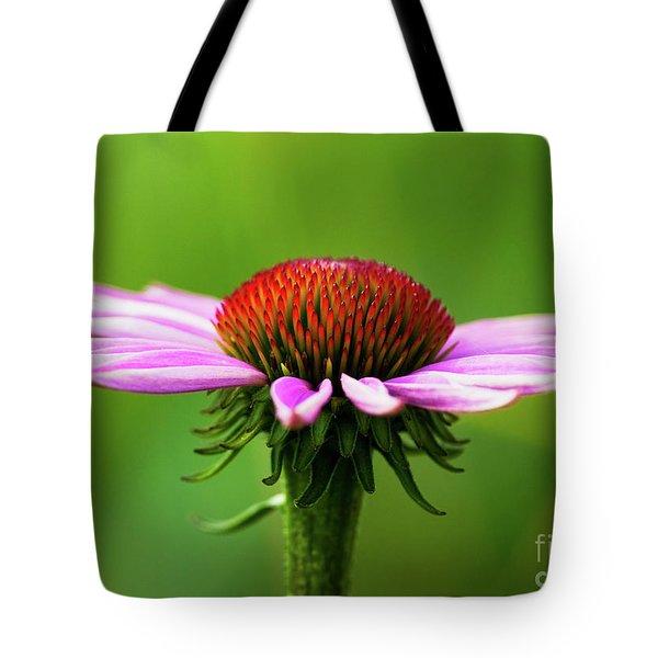 Summer Burst... Tote Bag by Nina Stavlund