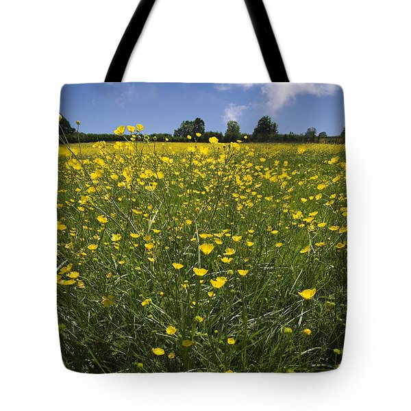 Summer Buttercups Tote Bag