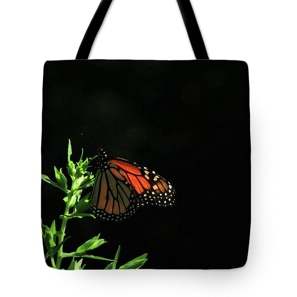 Summer Capture Tote Bag by Karol Livote