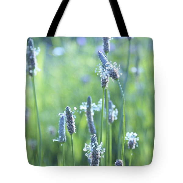 Summer Charm Tote Bag
