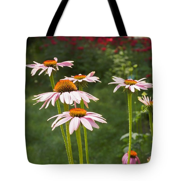 Summer Echinacea I Tote Bag