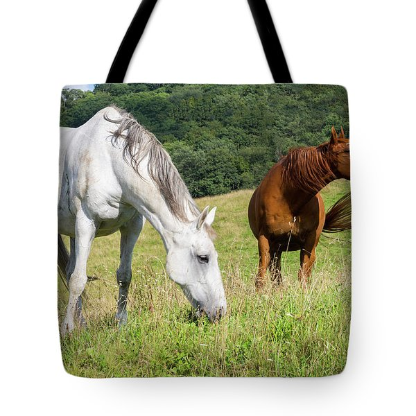 Summer Evening For Horses Tote Bag