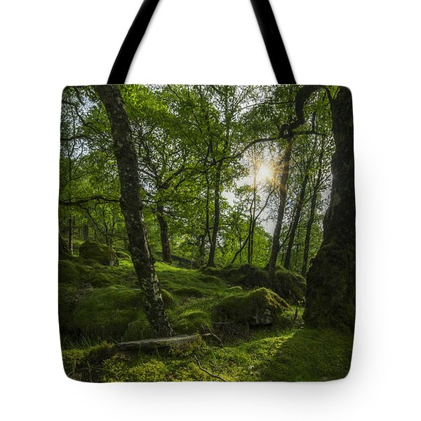 Summer Evenings In Wales Tote Bag by Ian Mitchell