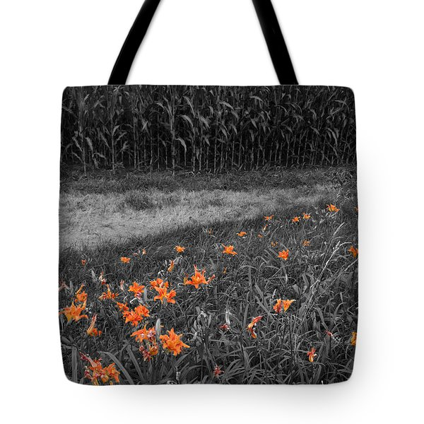 Tote Bag featuring the photograph Summer Fields by Dylan Punke