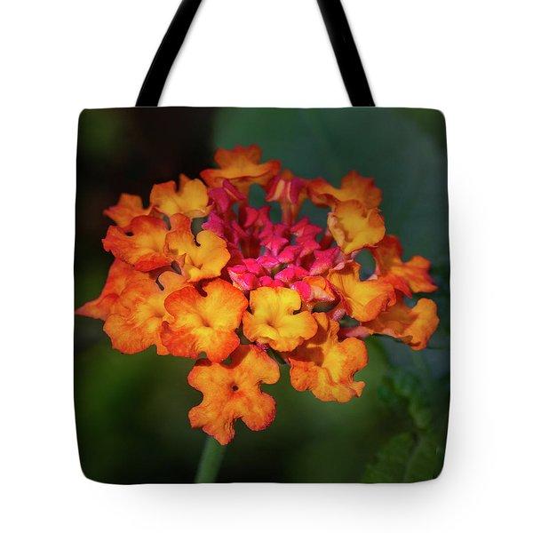 Summer Floral Colors Tote Bag
