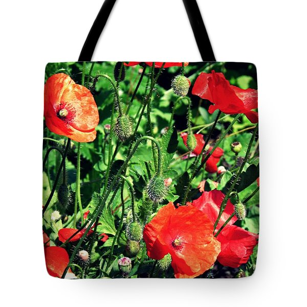 Summer Gardens At The Cloisters 3     Tote Bag
