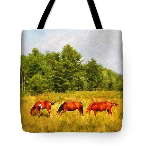 Summer Hay Burners Tote Bag
