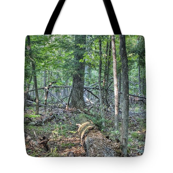 Summer In A Canadian Forest Tote Bag