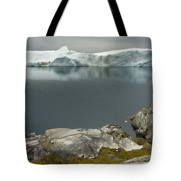 Summer In Greenland Tote Bag by Robert Lacy