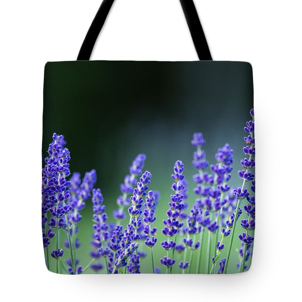 Summer Lavender Tote Bag