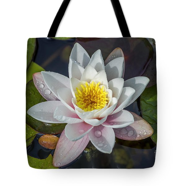 Summer Lily Tote Bag