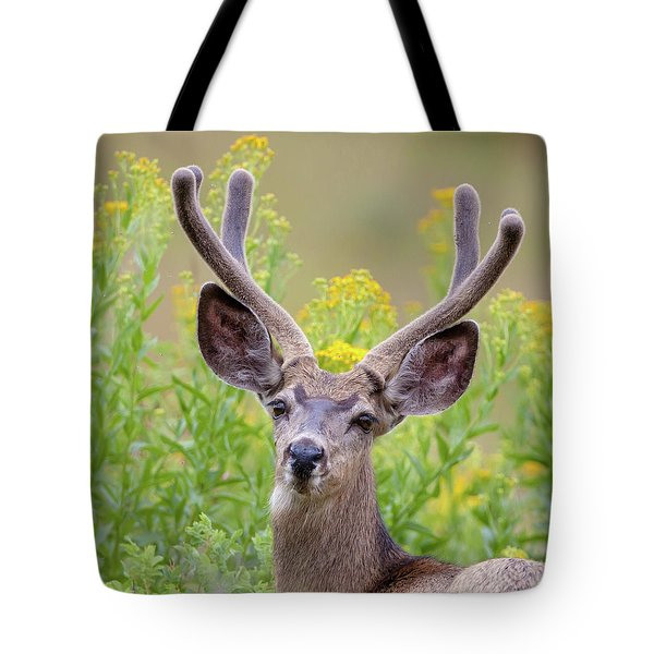 Summer Mule Deer Tote Bag