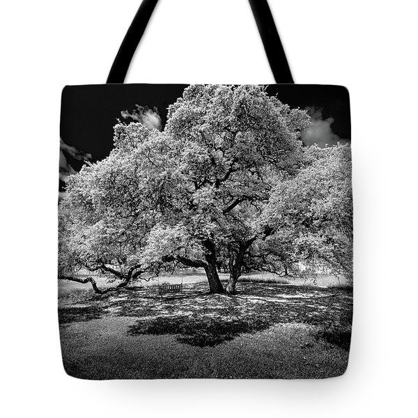 A Summer's Night Tote Bag by Darryl Dalton