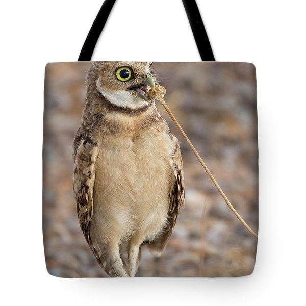 Summer Snack Tote Bag