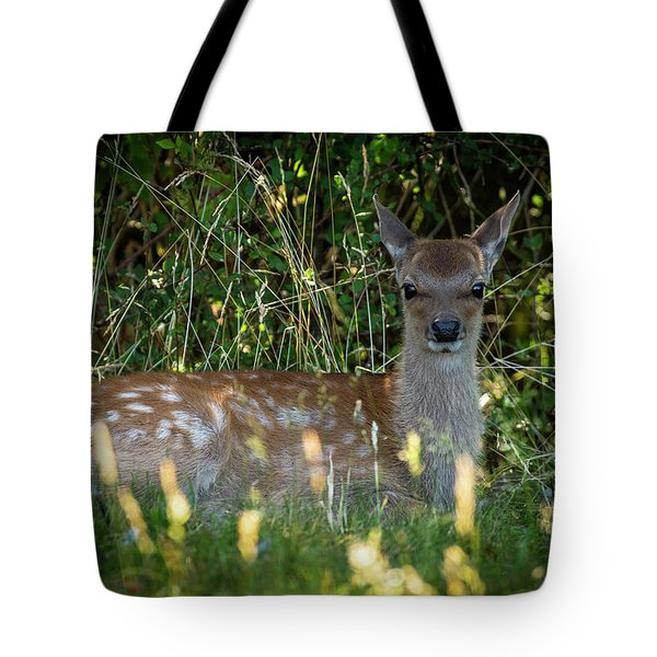 Tote Bag featuring the photograph Summer Sun by Cliff Norton